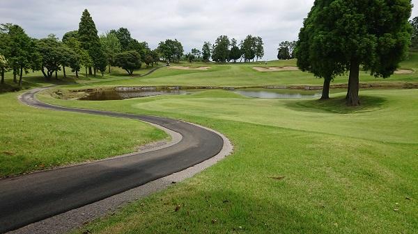 池とカート道が映るゴルフコース