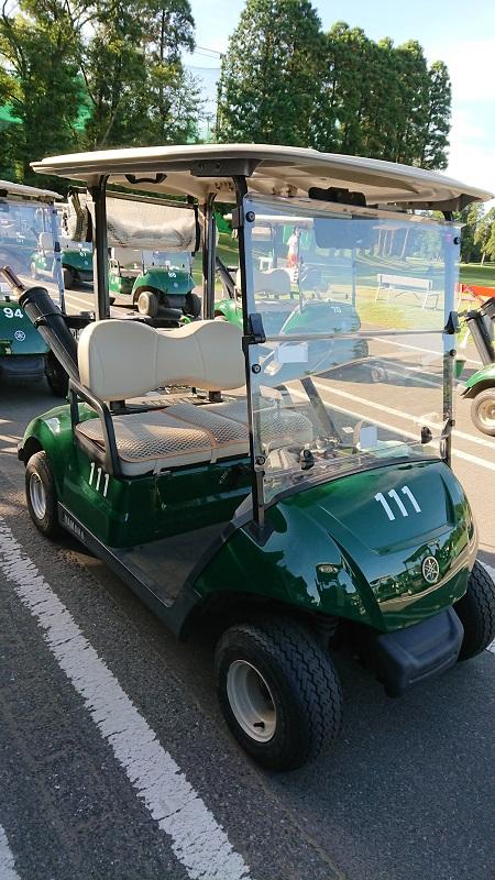 ゴルフ2人乗りカート