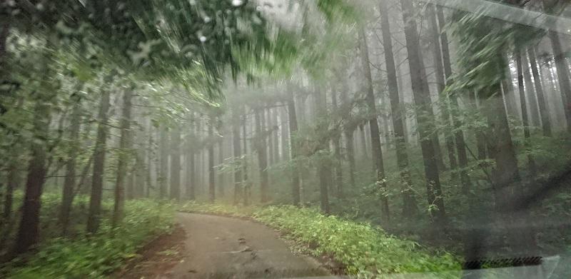 激しい雨と狭い小道
