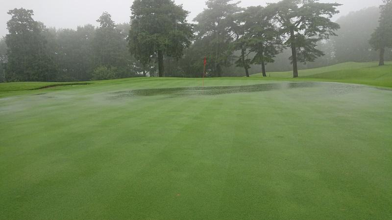 水たまりが出来るゴルフグリーン