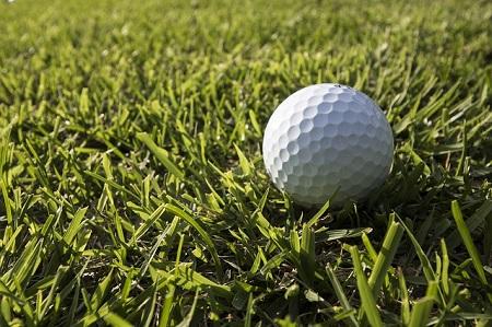 高麗芝とゴルフボール