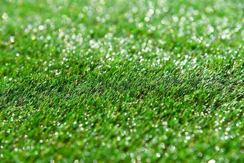 ゴルフ 濡れた 芝