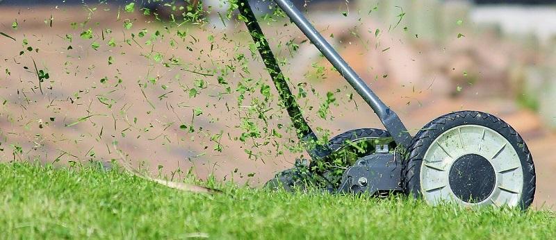 ゴルフ 乾いた 芝