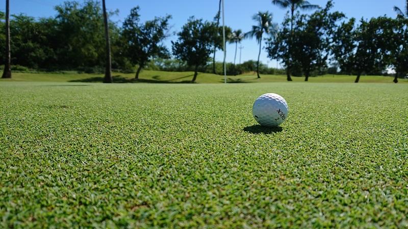 ハワイ ゴルフ グリーン